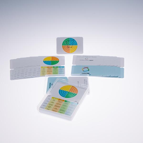 LUDOKI Organizationality - Ersatzkarten